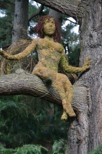 lady in the tree